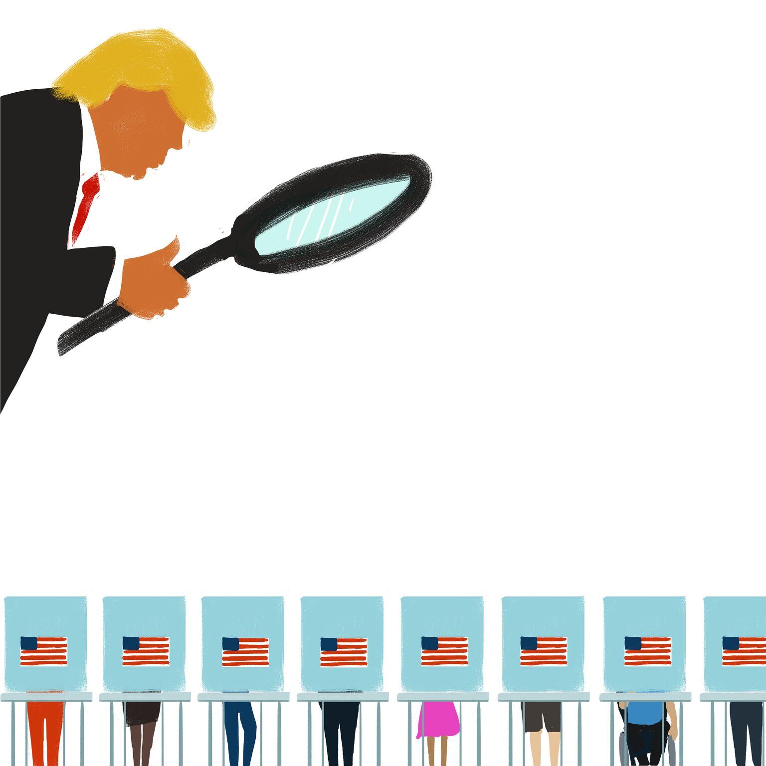 Trump investigates elections
